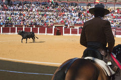 Diego Ventura, bullfighter on horseback spanish Royalty Free Stock Image