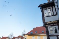 Diem Carpe написанное на немецком здании в золотых письмах стоковая фотография