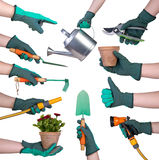 Dien handschoenholding het tuinieren hulpmiddelen in Stock Fotografie