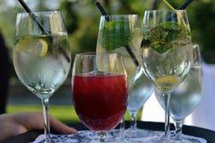 Dienblad met aperitifs Royalty-vrije Stock Afbeelding