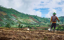 Dieng Plateau Royalty Free Stock Image