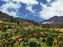 Dieng plateau village royalty free stock image