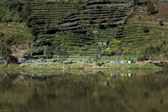 Dieng Plateau Royalty Free Stock Photography