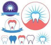 diente Imagen de archivo libre de regalías