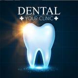 Diente brillante de Helthy con las luces Plantilla fresca del diseño de la estomatología Concepto dental de la salud Cuidado oral Imagen de archivo libre de regalías