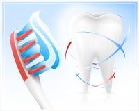 Diente, cepillo de dientes y crema dental blancos. Fotografía de archivo