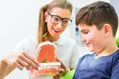 Diente de explicación de la limpieza del muchacho del dentista Foto de archivo libre de regalías