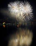 Diente de león de los fuegos artificiales del ` s Eve del Año Nuevo Imágenes de archivo libres de regalías