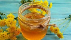 Diente de león fresco de la miel en el goteo de madera del fondo almacen de video