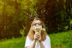 Diente de león que sopla de la mujer joven en parque del verano Fondo hermoso del bosque verde fotografía de archivo