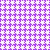 Diente de perros púrpura imagen de archivo