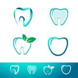 Diente dental Logo Set Imagen de archivo