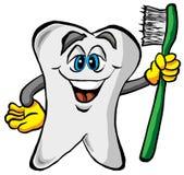 Diente que sostiene un cepillo de dientes Foto de archivo libre de regalías