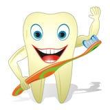 Diente sano feliz con el cepillo de dientes fotos de archivo