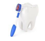 Diente y cepillo de dientes Fotos de archivo
