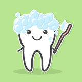 Diente y cepillo de dientes Imagenes de archivo