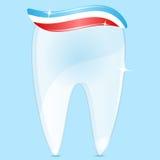 Diente y crema dental Fotos de archivo