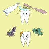 dientes Fotos de archivo libres de regalías