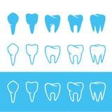 dientes stock de ilustración