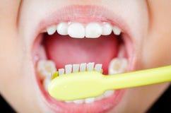Dientes de cepillado con el cepillo de dientes Imágenes de archivo libres de regalías