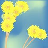 Dientes de león amarillos contra el cielo stock de ilustración