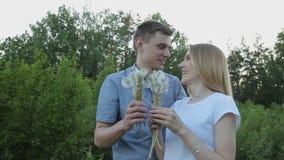 Dientes de león enamorados de las flores del soplo del individuo y de la muchacha almacen de metraje de vídeo