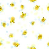 Dientes de león y mariposas inconsútiles Imagen de archivo libre de regalías