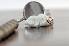 Dientes e instrumentos dentales imágenes de archivo libres de regalías