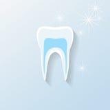 Dientes o ejemplo dental Foto de archivo