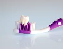 Dientes y cepillo de dientes Fotografía de archivo libre de regalías