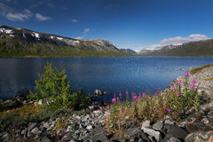 Diep blauw meer Breiddalsvatnet in Noorwegen royalty-vrije stock foto