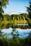diep donker bosmeer met bezinningen van bomen en groen gebladerte royalty-vrije stock foto's