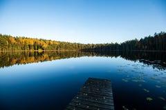 diep donker bosmeer met bezinningen van bomen en groen gebladerte royalty-vrije stock foto