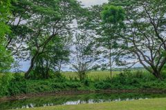 Diep regenwoud in het nationale park prachubkirikhun frome Thailand van Khao Samroiyod stock foto