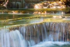 Diepe bos natuurlijke waterval dichte omhooggaand Stock Foto's