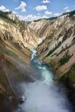 Diepe canion met rivier en dalingen stock foto's