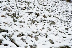 Diepe melancholie Gevallen boomstam op steenachtige heuvel Sneeuw gladde keien op heuvel Stock Fotografie