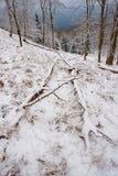 Diepe melancholie Gevallen boomstam op steenachtige heuvel Sneeuw gladde keien op heuvel Royalty-vrije Stock Foto's