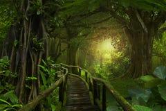 Diepe tropische wildernissen stock afbeelding