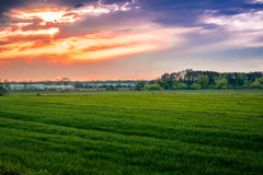 Diepe zonsondergang Stock Foto
