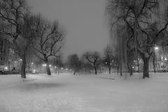 Diepten van de Winter Stock Foto's