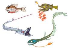 Diepzee vissen Stock Fotografie