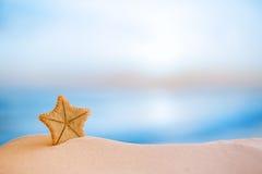 Diepzee zeldzame zeester met oceaan, strand en zeegezicht Stock Afbeeldingen