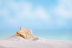 Diepzee zeldzame zeester met oceaan, strand en zeegezicht Stock Afbeelding