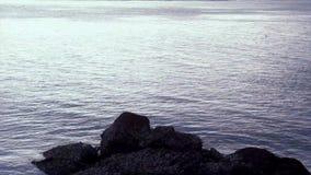 Diepzeegolfzonlicht stock footage