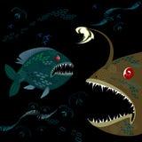 Diepzeevissen Royalty-vrije Stock Afbeeldingen