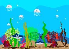 Diepzeewater Stock Fotografie