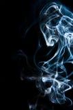 Dier in de ghosty rook. Royalty-vrije Stock Afbeeldingen
