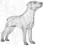 Dier van de hond het leuke 3d vectorillustratie Abstracte de driehoeks geometrische achtergrond van de wirframeveelhoek Lage poly stock illustratie
