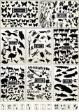 Dier, vogel, vissen, insect, vlinder en plant Royalty-vrije Stock Afbeeldingen